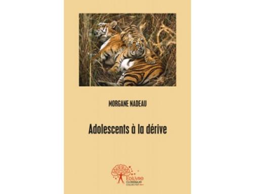 Morgane Nadeau est aussi l'auteur de plusieurs ouvrages de référence dans le monde de la psychologie.